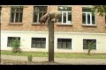 Parkour-hunden