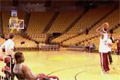 Basketskott
