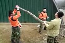 Soldat i Korea ska sparka av gren