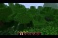 Minecraft Predator