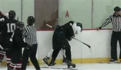 Hockey Fight Avbruten