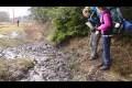 Fail i leran